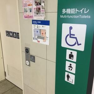 高田馬場駅(地下1階)(東西線改札付近 多目的トイレ)のオムツ替え台情報 画像1