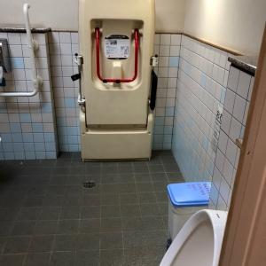 新宿御苑旧御涼亭横 トイレのオムツ替え台情報 画像1