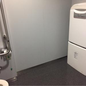 多目的トイレの中にオムツを替える場所があります。