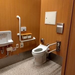 車椅子用のトイレにおむつ交換用のベビーベッド