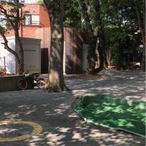 Meguro Kuritsu Tagiri Park(1F)のオムツ替え台情報 画像1