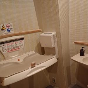 タイルの壁がキレイな多目的トイレ