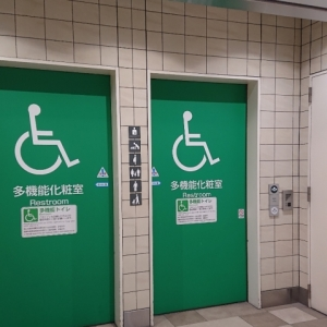 JR新宿駅 ミライナタワー・甲州街道・新南改札内多目的トイレ(2F)のオムツ替え台情報 画像2