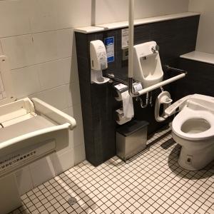 イオンレイクタウンkazeトイレ(ムラサキスポーツ近く)(3F)のオムツ替え台情報 画像2