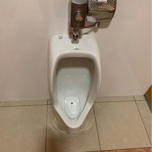 女性用トイレ 子供用トイレ