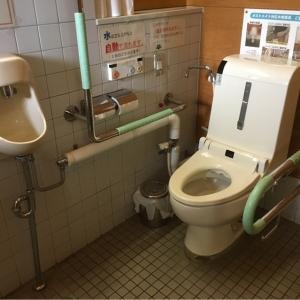 高田図書館前公衆トイレ(1F)のオムツ替え台情報 画像2