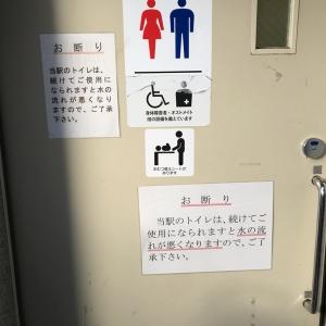 近鉄橿原神宮前駅店(多機能トイレ)のオムツ替え台情報 画像1