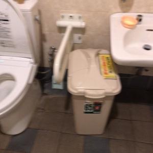 メガマックス千葉NT店(多目的トイレ内)のオムツ替え台情報 画像1