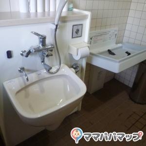 ハンズマン くさみ店(外のトイレ)のオムツ替え台情報 画像1