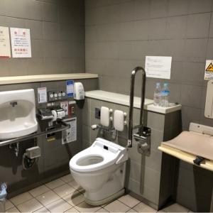 だれでもトイレの中におむつ交換台がありました