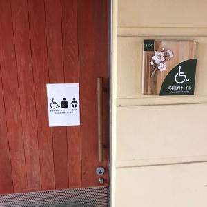 秦山公園のオムツ替え台情報 画像1