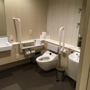 大名古屋ビルヂング 4階 多目的トイレ(4F)のオムツ替え台情報 画像1