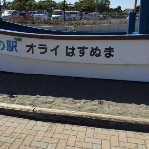 漁船の遊び場