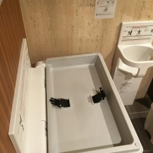ホテル椿山荘東京(プラザ棟2F(多目的化粧室))のオムツ替え台情報 画像5