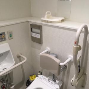 だれでもトイレには小児用補助便座もあります