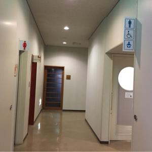 阿南市情報文化センターコスモホール(1F)のオムツ替え台情報 画像1
