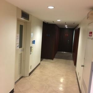 新東京ビル(B1階 多目的トイレ)のオムツ替え台情報 画像1