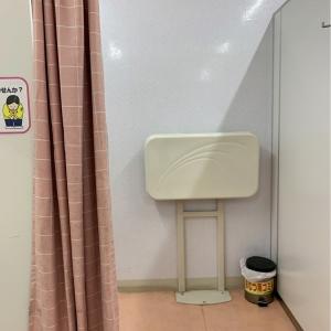 カーテンで仕切れますが中は椅子がひとつ、オムツ台、オムツ用と書いたゴミ箱、流し台があります。使っていませんがあんまり綺麗な雰囲気ではないです。