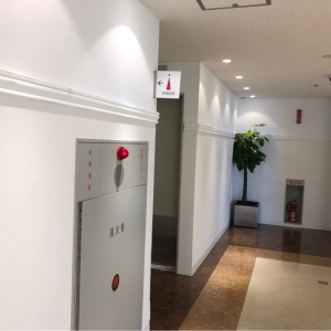 SS30(30F 女子トイレ内)(エスエスサーティー)のオムツ替え台情報 画像6
