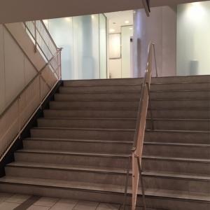 階段踊り場のトイレ。