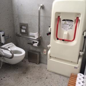 石の島の石 トイレのオムツ替え台情報 画像1