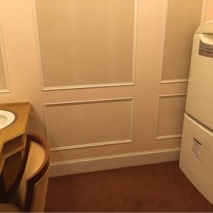 帝国ホテル東京(本館2F 宴会場婦人用化粧室隣)の授乳室・オムツ替え台情報 画像3
