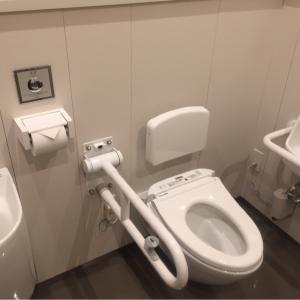 豊島区役所(5F 多目的トイレ)のオムツ替え台情報 画像2