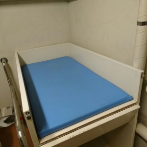 世田谷区立梅丘図書館(1F 多機能トイレ)のオムツ替え台情報 画像1