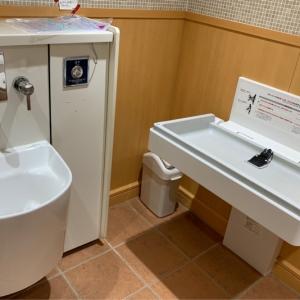 多目的トイレにおむつ台とおしりが温水で洗えるようになってました!