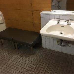 高田図書館前公衆トイレ(1F)のオムツ替え台情報 画像1