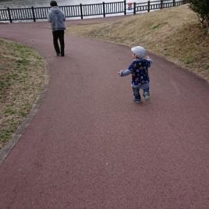 遊歩道も整備されていて歩きやすいようです