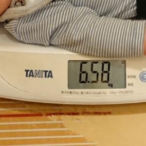 体重計は10g計です。下の台は身長計になってます。