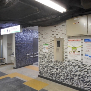 都営三田線日比谷駅(改札内)のオムツ替え台情報 画像3