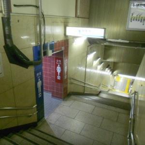 東京メトロ有楽町線(日比谷方面改札内)のオムツ替え台情報 画像2