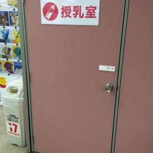 入り口はこんな感じです。簡易的ですが、施錠も可能です。