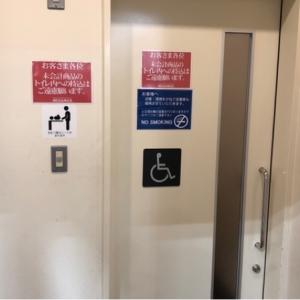 メガマックス千葉NT店(多目的トイレ内)のオムツ替え台情報 画像3