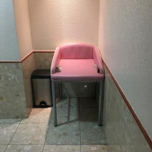 銀座コア(5F 女性用トイレ内)の授乳室・オムツ替え台情報 画像7