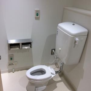 女性用トイレには子ども用の小さいサイズのトイレいがありました