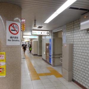 都営三田線 春日駅(改札内 各トイレ内)のオムツ替え台情報 画像1