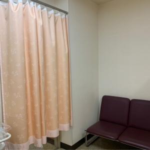 このカーテンをくぐって中に入ったところ