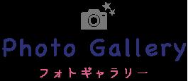 Photo Gallery フォトギャラリー