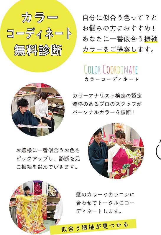 colorcheck.jpg
