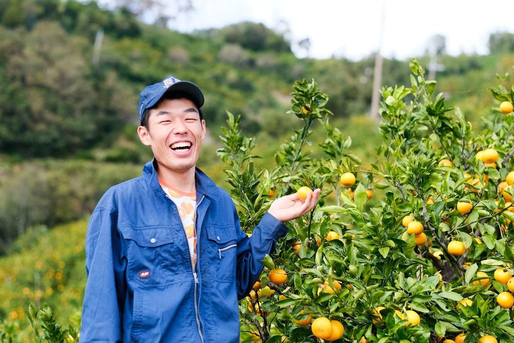 脱サラして家業を継いだ6代目みかん農家・小澤光範さんに聞く、農家の仕事と課題