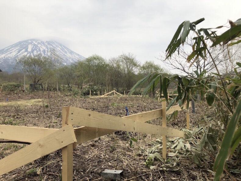 Mount Yōtei1