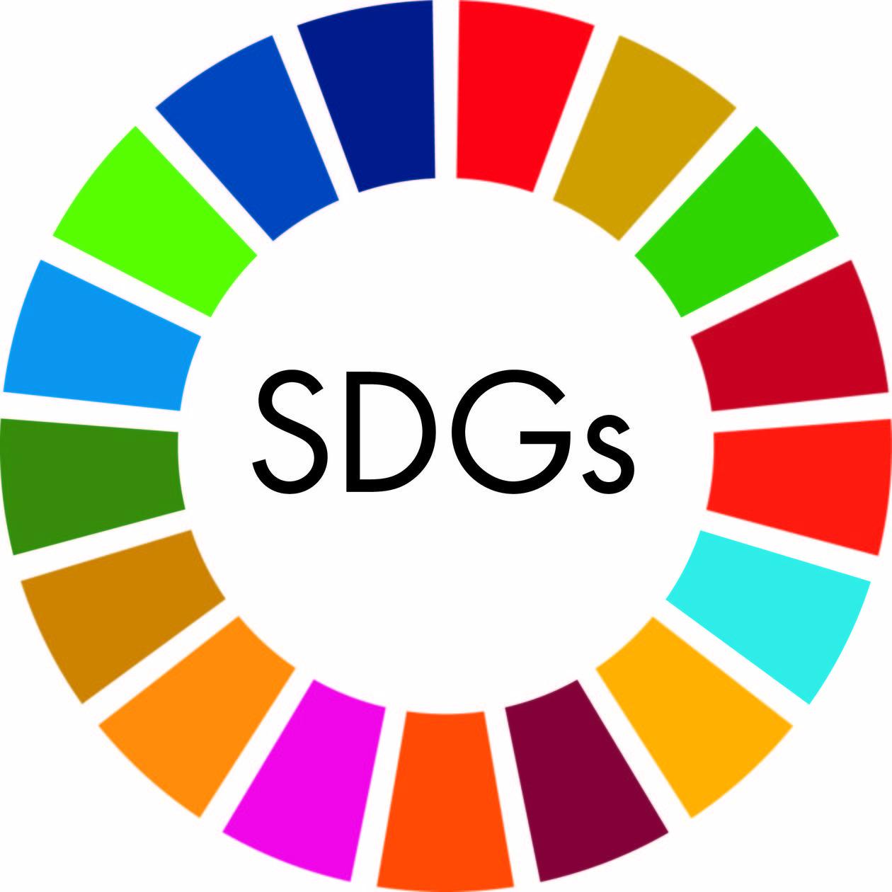 SDGs達成のためにプログラミングができること
