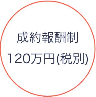 成功報酬制120万円(税別)