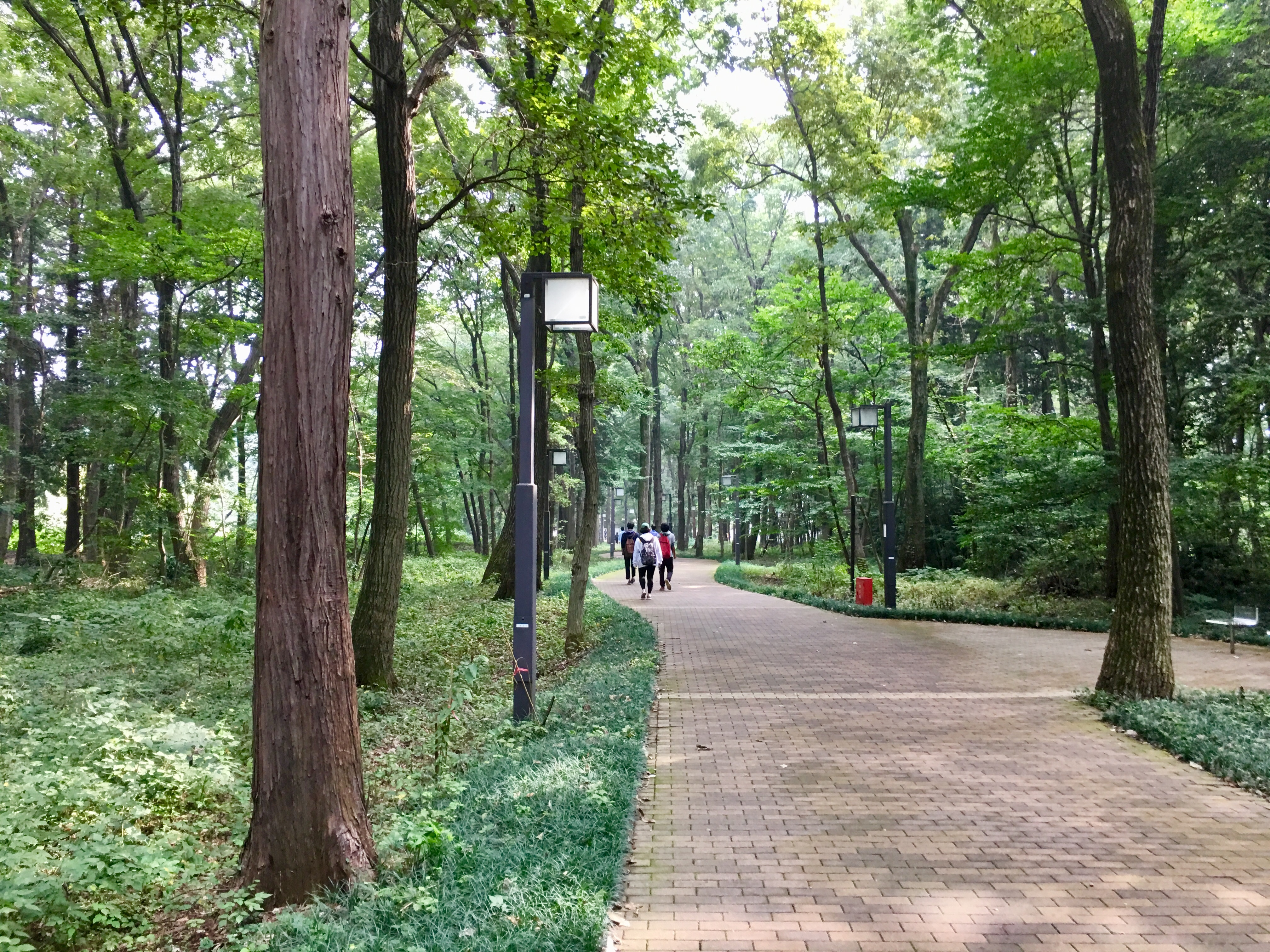 東洋大学川越キャンパス イー・レンジャー株式会社