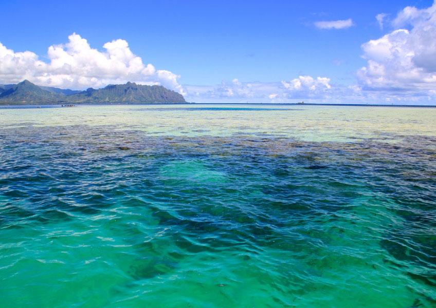 天国の海でオーシャンスポーツデラックス8種目