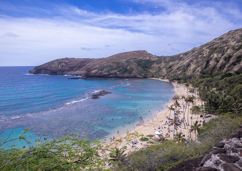 東海岸観光&幻の島サンドバー上陸+海亀ウォッチングツアー
