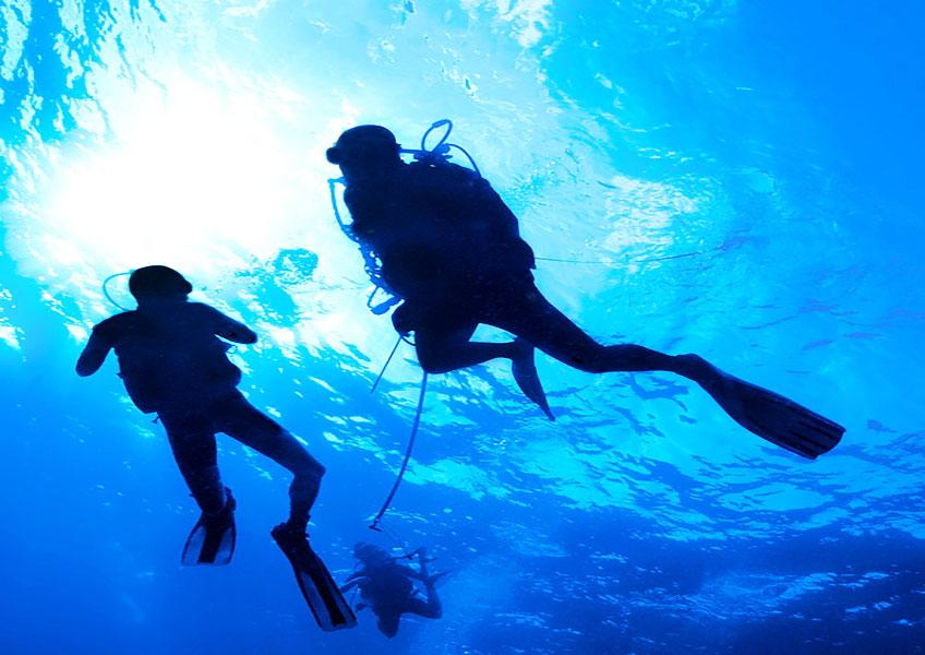 カイルアタウン散策+天国の海で体験ダイビング 1タンク